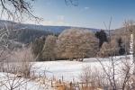 Ardenne - l'hiver - la neige (18).jpg