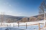 Ardenne - l'hiver - la neige (17).jpg