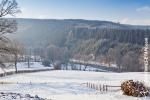 Ardenne - l'hiver - la neige (16).jpg