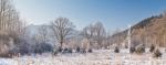 Ardenne - l'hiver - la neige (15).jpg
