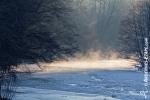 Ardenne - l'hiver - la neige (27).jpg