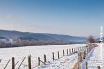 Ardenne - l'hiver - la neige (24).jpg